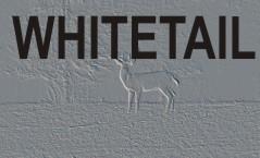 SITKA Whitetail
